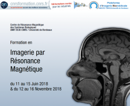 MRI training Bordeaux by the CRMSB - upcoming sessions